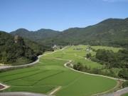 田染荘小崎の農村景観