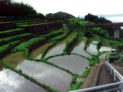 Hiji Town / Blessed with spring water and the Nagano terraced rice fields