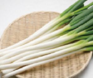 Welsh onions