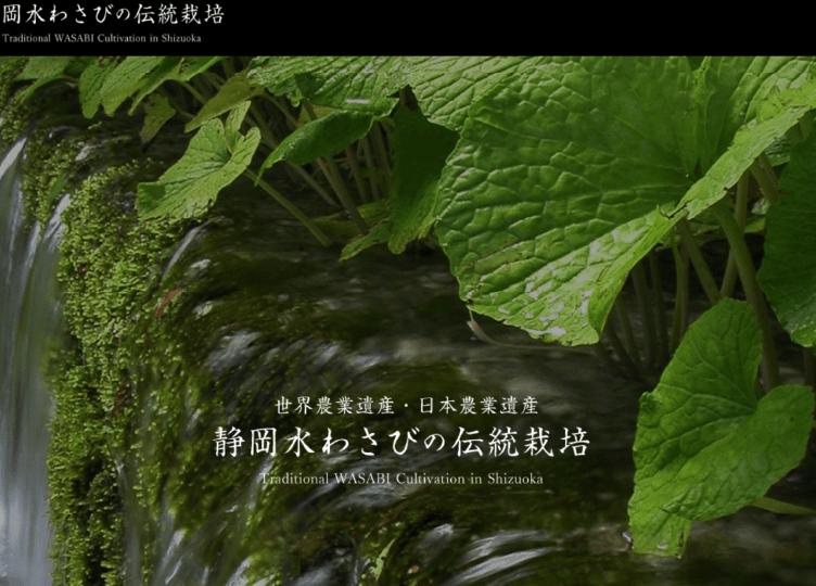 静岡水わさびの伝統栽培-発祥の地が伝える人とわさびの歴史-