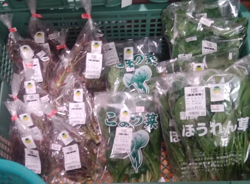 野菜 花き 果物 生しいたけ